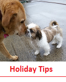 "Click for Tips on ""Preparing for your dog's stay at Kennels"""